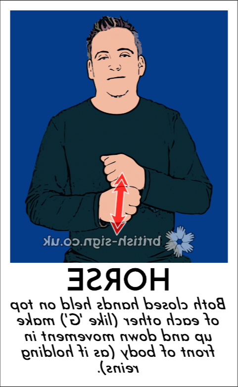BSL Sign of The Day - 2019/12/19-horse.png